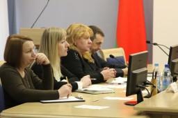 Представители Комитета госконтроля Беларуси приняли участие в семинаре по вопросам осуществления контроля за исполнением бюджета, проведенном в режиме видеосвязи с участием ВОФК стран СНГ