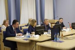 Совместный белорусско-российский семинар по обмену опытом в сфере осуществления контроля и надзора состоялся в режиме видеоконференции