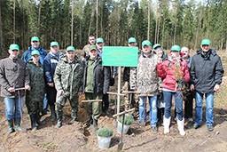 Комитет государственного контроля Гродненской области принял активное участие в республиканском субботнике 22 апреля 2017 года. Работники Комитета трудились на посадке леса в ГЛХУ «Скидельский лесхоз». Посажено более 4000 насаждений на территории около 1 га.
