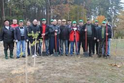 Сотрудники Комитета государственного контроля Гомельской области приняли участие в добровольной акции «Чистый лес»