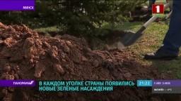 Традиция, проверенная временем. В Беларуси прошел республиканский субботник (телеканал «Беларусь 1», программа «Панорама», 21-00)