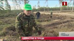 В республиканском субботнике приняли участие около 3 миллионов белорусов (телеканал «Беларусь-1», программа «Главный эфир», 21-00)