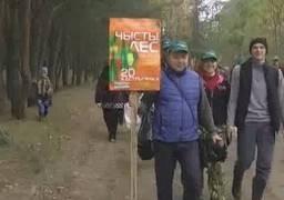 Сотрудники Комитета государственного контроля Брестской области приняли участие в республиканской акции «Чистый лес» (телекомпания «Буг-ТВ», программа «БУГ-ИНФОРМ»)