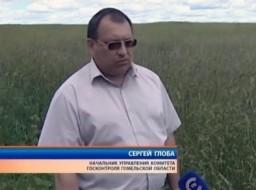Результаты контроля за ходом уборки трав в Чечерском районе
