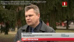 Миллионы кубометров леса лежат на складах.  Телесюжет на телеканале Беларусь – 1, программа «Главный эфир».