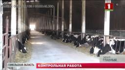 Наравне со специалистами-аграриями сейчас в полях работают и контролеры.
